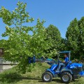 MultiOne mini loader 9 series with tree shear